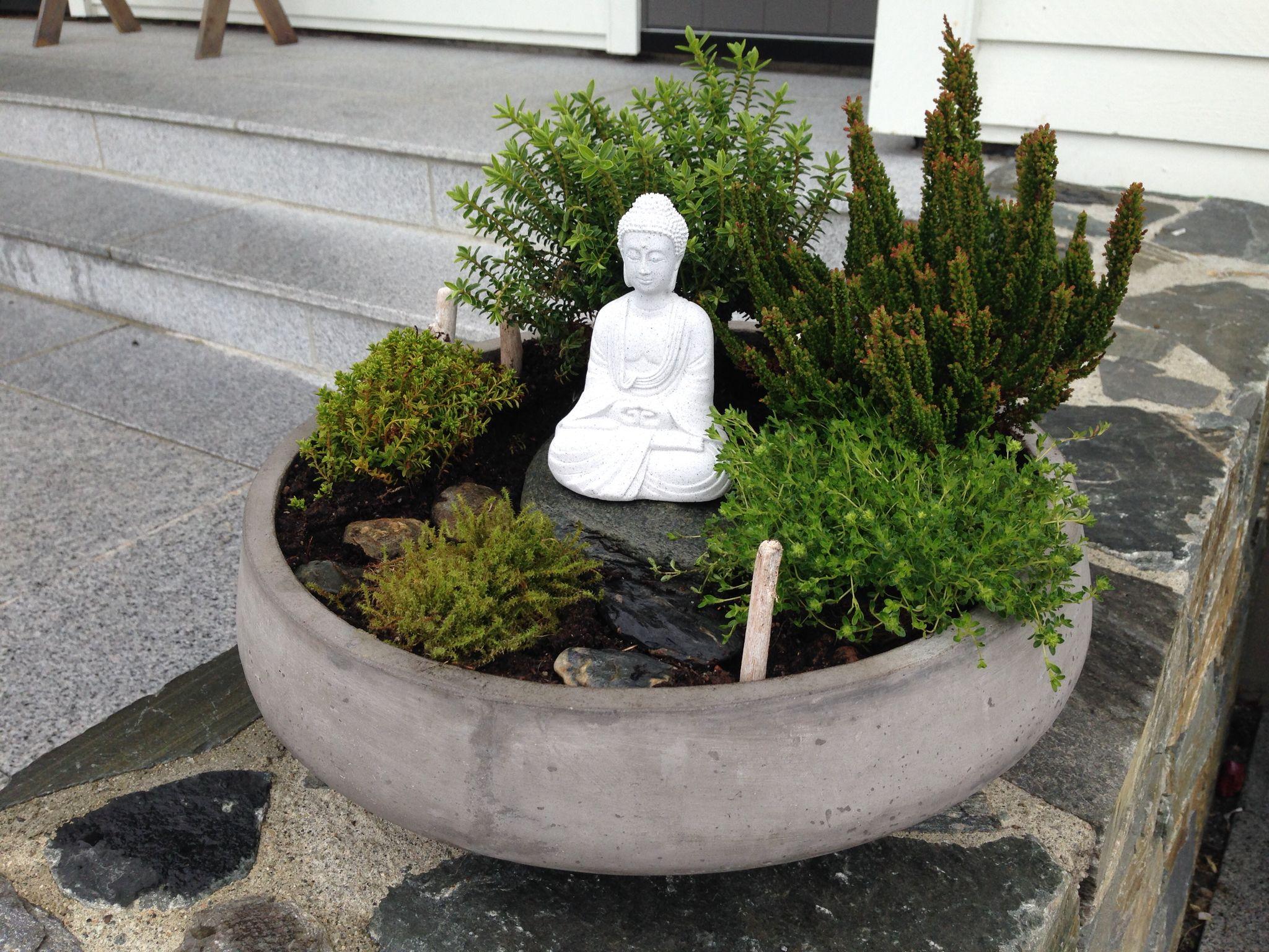 Buddha Buddha Garden Indoor Zen Garden Mini Zen Garden
