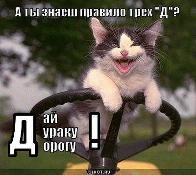 Неписаные правила дорожного движения | Смешные фотографии ...