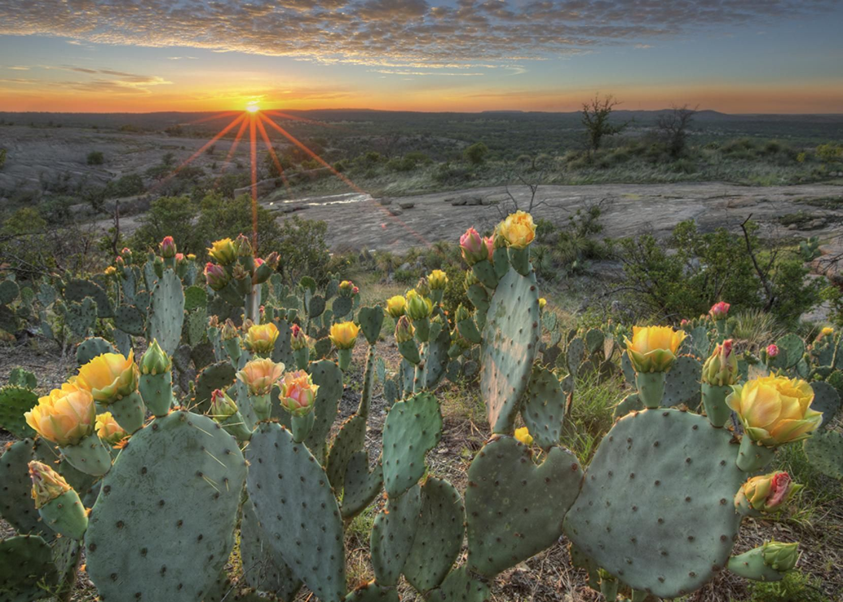 regional experts recommend ways to protect the texas hill country
