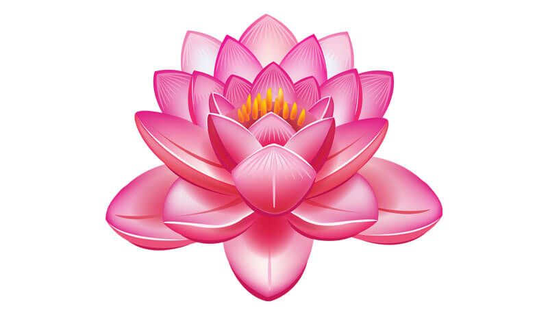 Buddhist Symbols For Inner Peace Spirituality Flowers Buddhist