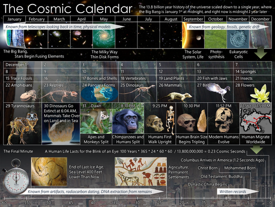 Cosmic Calendar.Cosmic Calendar Youth Activitiy To Put Things In A Wider