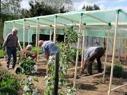 bildergebnis f r tomatenhaus selber bauen garten pinterest tomatenhaus selber bauen. Black Bedroom Furniture Sets. Home Design Ideas