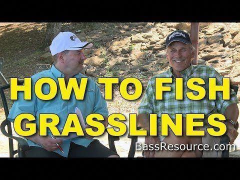 how to fish #beginnersfishingrod   Bass fishing tips, Bass ...