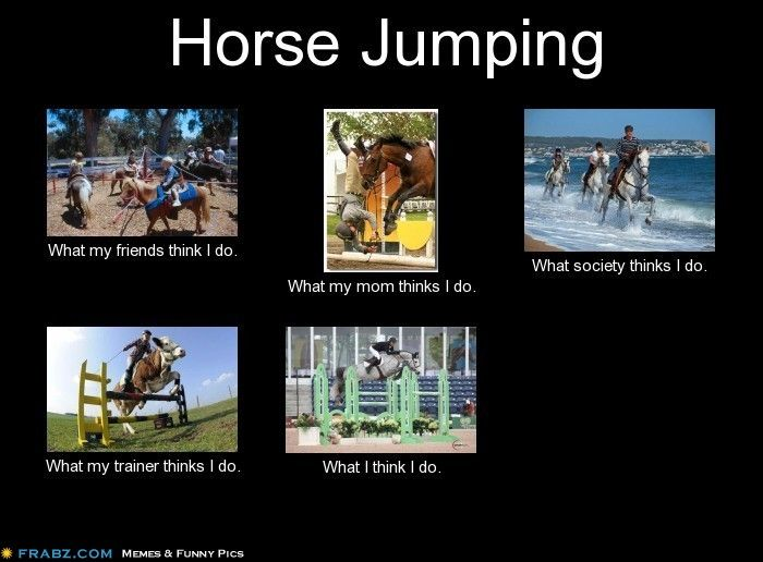 Horse jumping meme generator what i do my two true loves 3 meme generator what i do maxwellsz