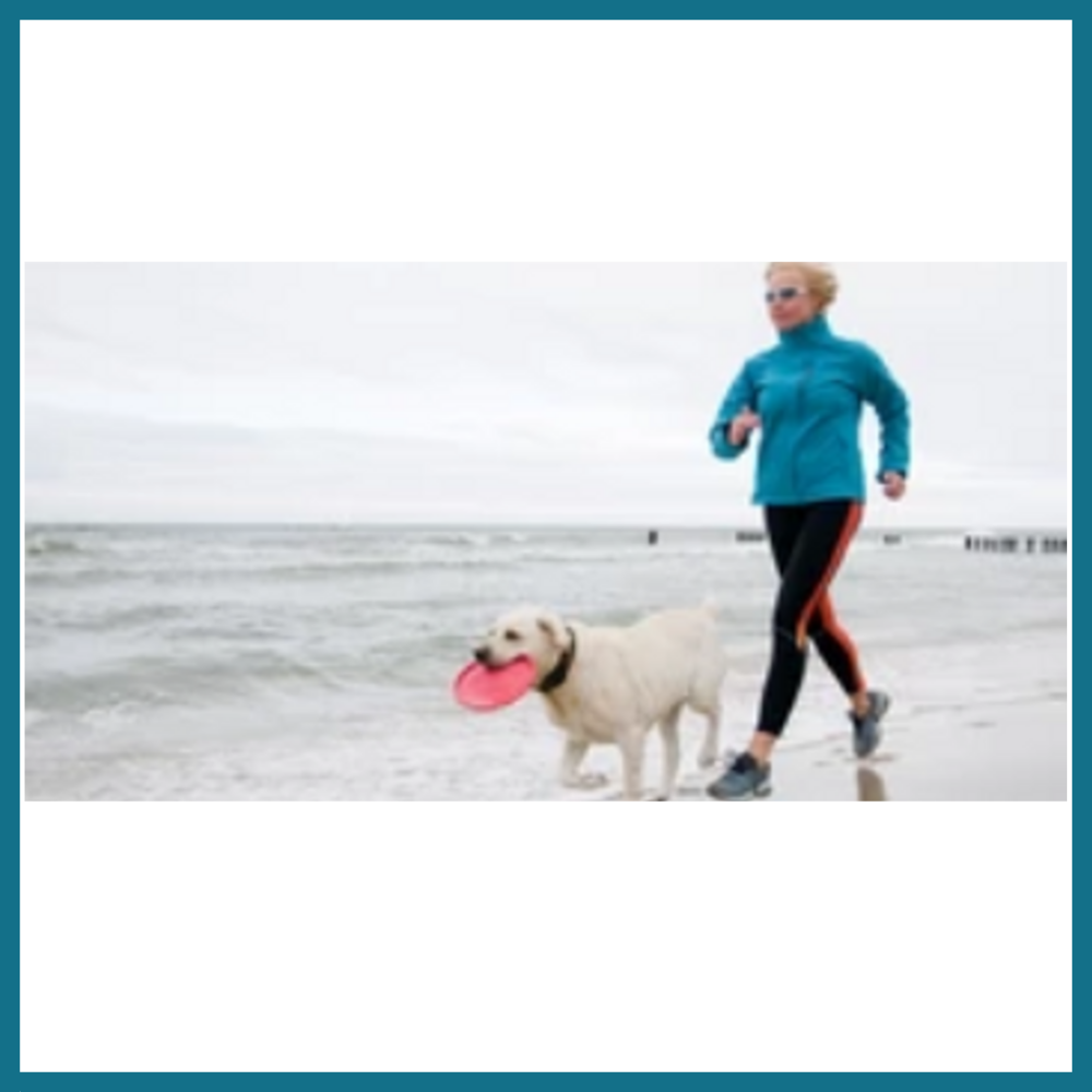 Holistic Wellness Package: Healthy Pet Starter