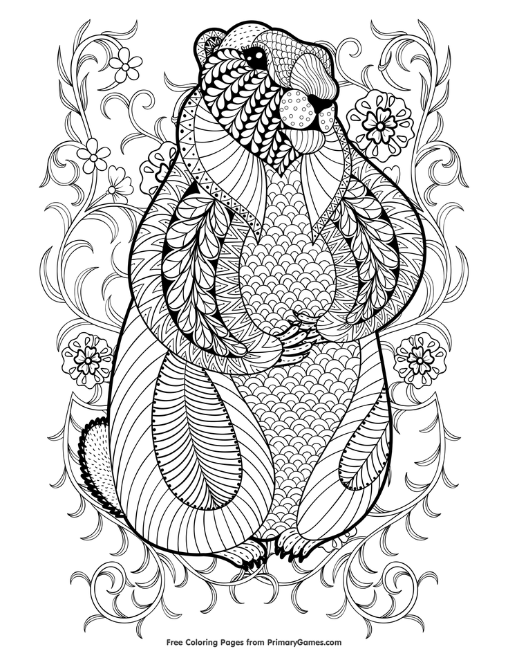 Groundhog Day Coloring Pages Ebook Zentangle Groundhog