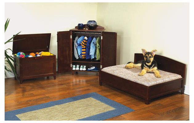 Fully Furnished Pet Bedrooms Dog bedroom, Animal room