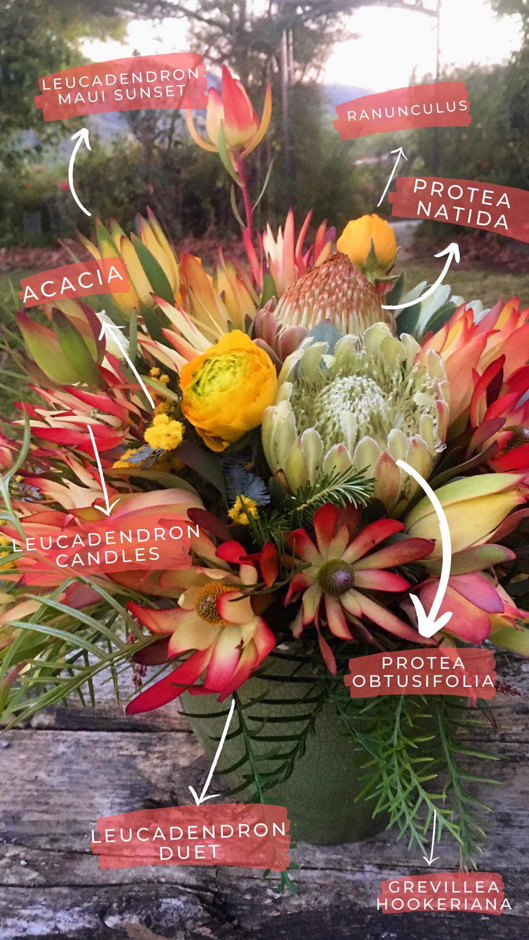 Mixed Protea Bouquet In 2020 Protea Bouquet Flowers Protea
