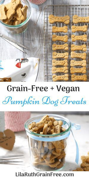 Pie Buckwheat Dog Biscuits  Lila Ruth Grain Free Treat Your Furry Friend To A Delicious Fall TreatTreat Your Furry Friend To A Delicious Fall Treat
