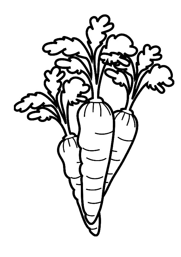 Carrot Garden Coloring Pages Best Place To Color In 2021 Garden Coloring Pages Cars Coloring Pages Coloring Pages