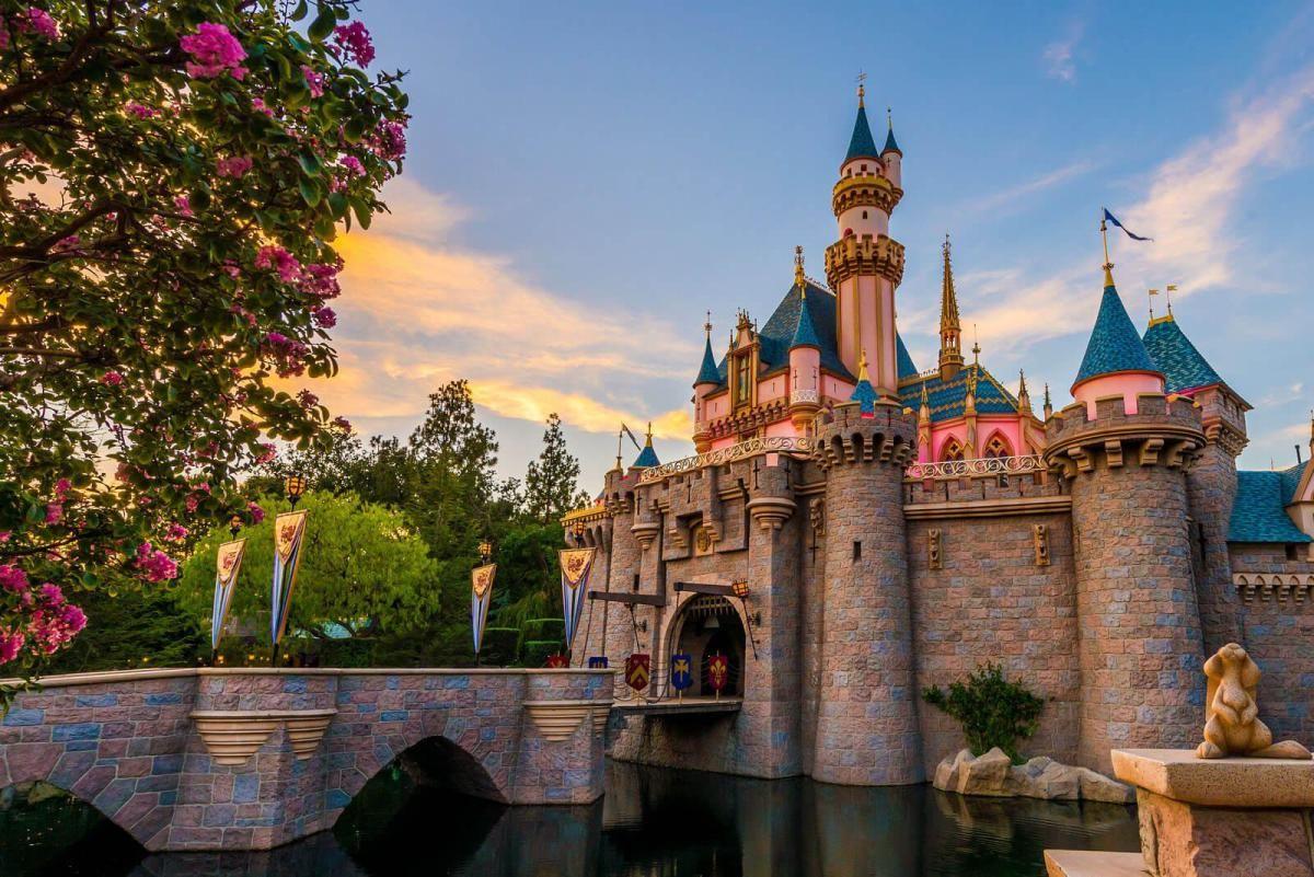 Disneyland Crowd Tracker (With images) Disneyland crowds