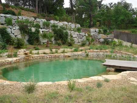 Bionova natural swimming pools bionova natural pools for Koi pond natural swimming pool