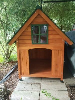 Boomer George T Bone A Frame Dog House Hayneedle Pups Dogs