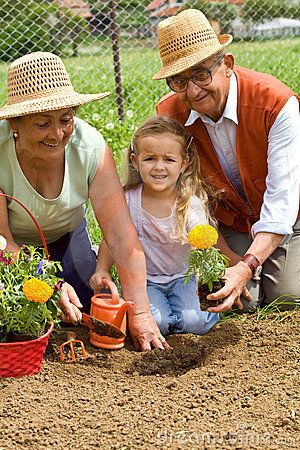 Image result for grandparents and grandkids gardening