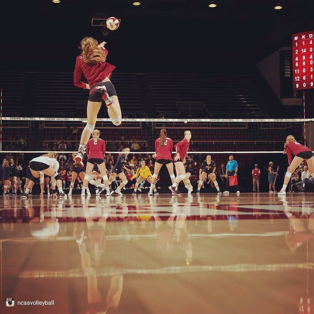 Pin By Jack Teague On College Volleyball In 2020 Stanford Volleyball Cardinal
