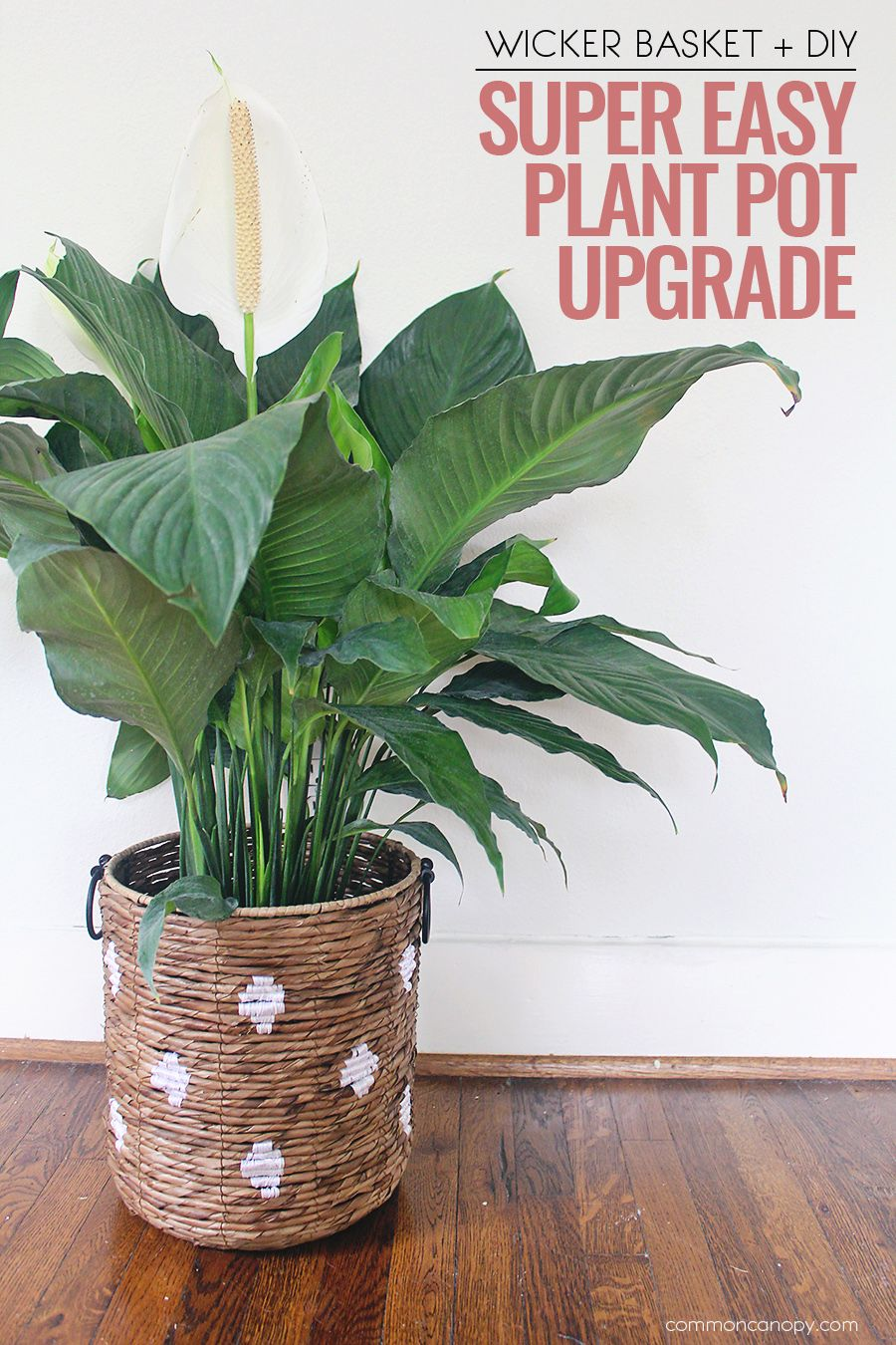 Super Easy Diy Plant Pot Upgrade With Wicker Baskets Common Canopy Plant Pot Diy Wicker Basket Diy Easy Plants