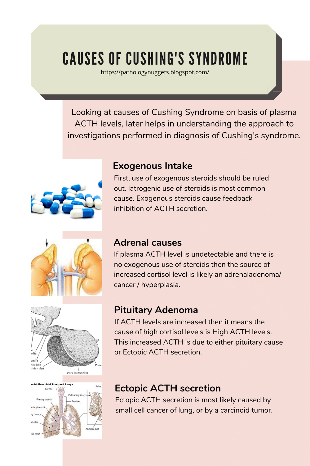 cancer endocrine system causes
