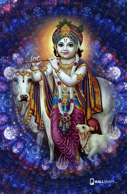 Lord Baby Krishna With Cow Hd Images High Quality Wallpaper For Your Mobile Download Lord Baby Krishna With Cow Hd Baby Krishna Krishna Krishna Radha Painting