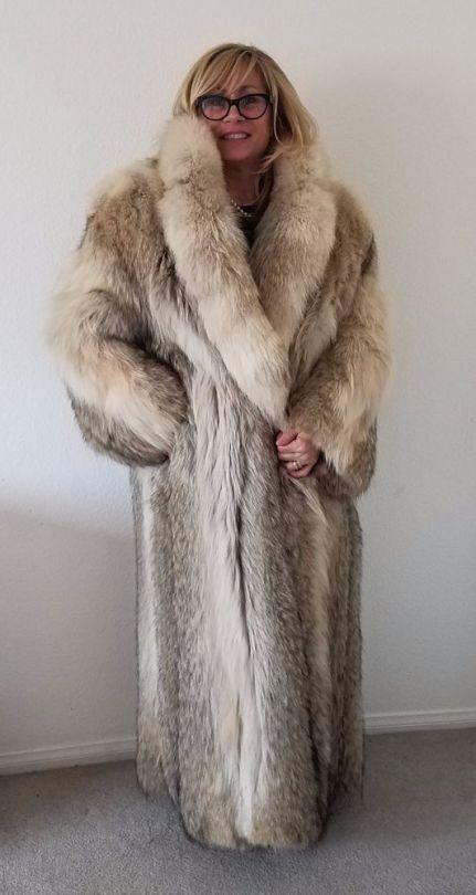 Coyote Fur Coat >> Coyote Fur Nice Coyote Lynx And Bobcat Coyote Fur Coat Fur Fur
