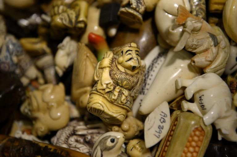 Picture of pieces of carved ivory