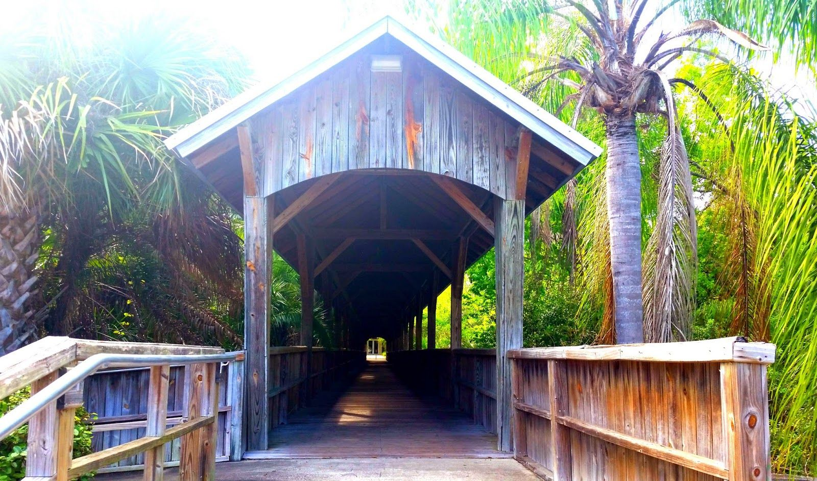 Cool Places to Visit Near Orlando, Florida Cool places