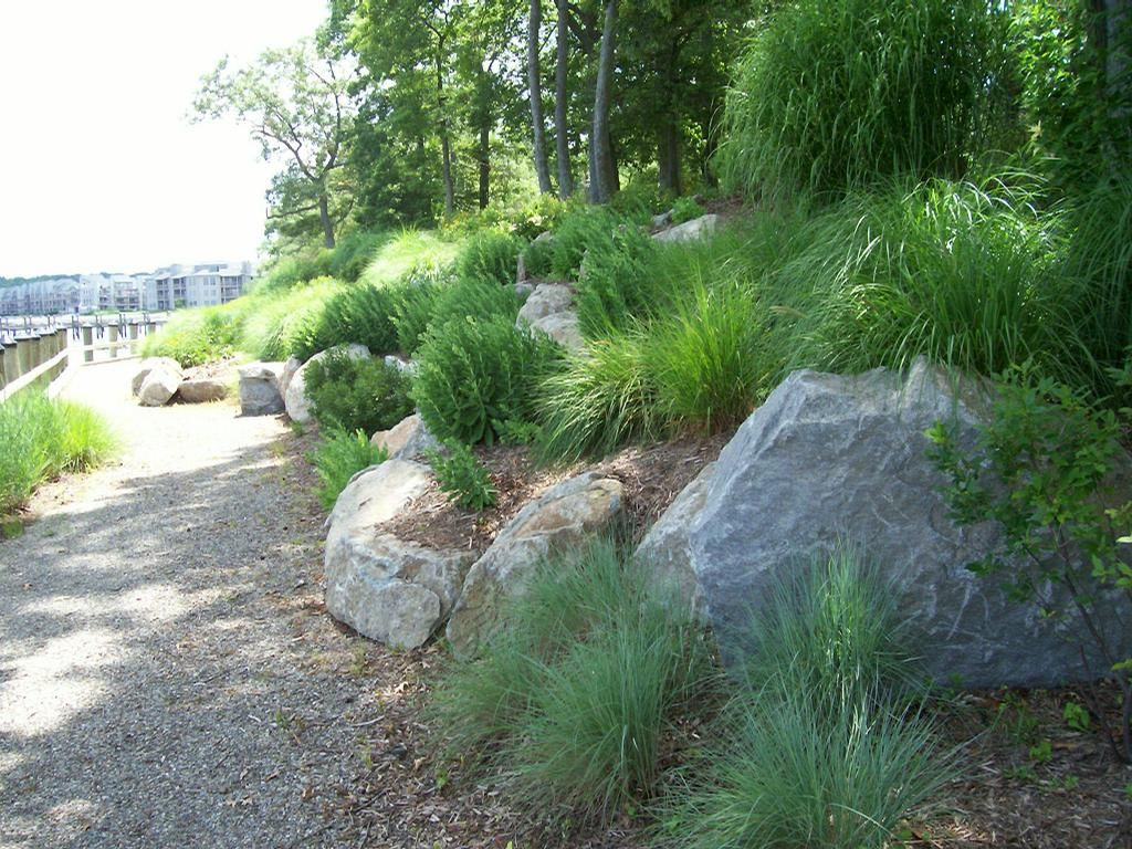 Groovy 1000 Images About Waterfront Landscape On Pinterest Decks Largest Home Design Picture Inspirations Pitcheantrous