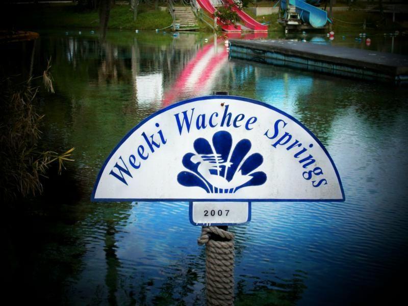 Weeki Wachee Springs Florida S Newest State Park Florida Travel Visit Florida State Parks