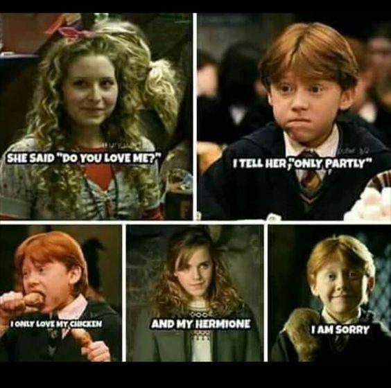 Ron Funny Harry Potter Song Harry Potter Jokes Harry Potter Memes Hilarious