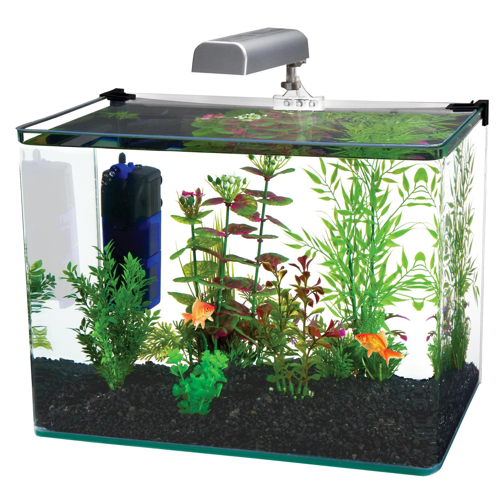 Water World RADIUS Desktop 7.5-Gallon Aquarium Kit With