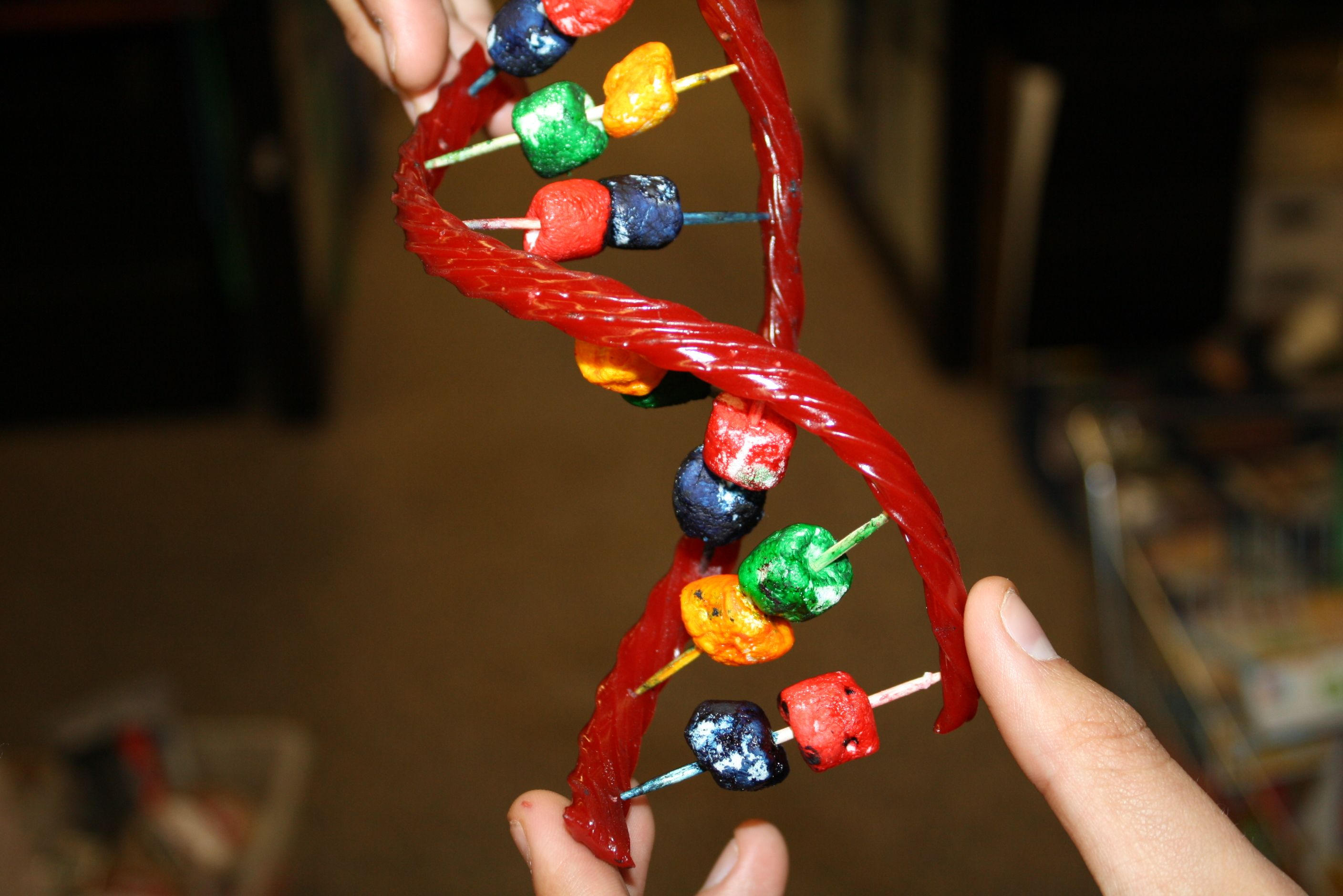 Double Helix Craft Candy Dna