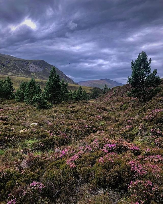 VisitScotland (@visitscotland) • Photos et vidéos Instagram