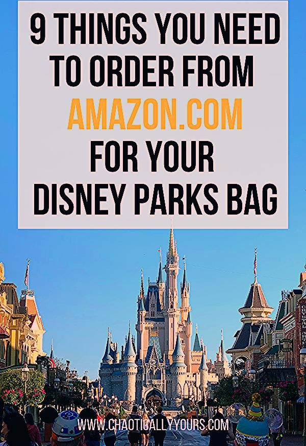 Photo of 9 Things You Need TO Order from Amazon.com for Your Disney Parks Bag
