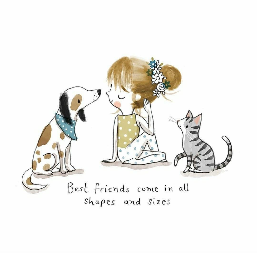 Pin By Stella Stella On Husky Memes Funny Girl Quotes Girl Quotes Cute Drawings