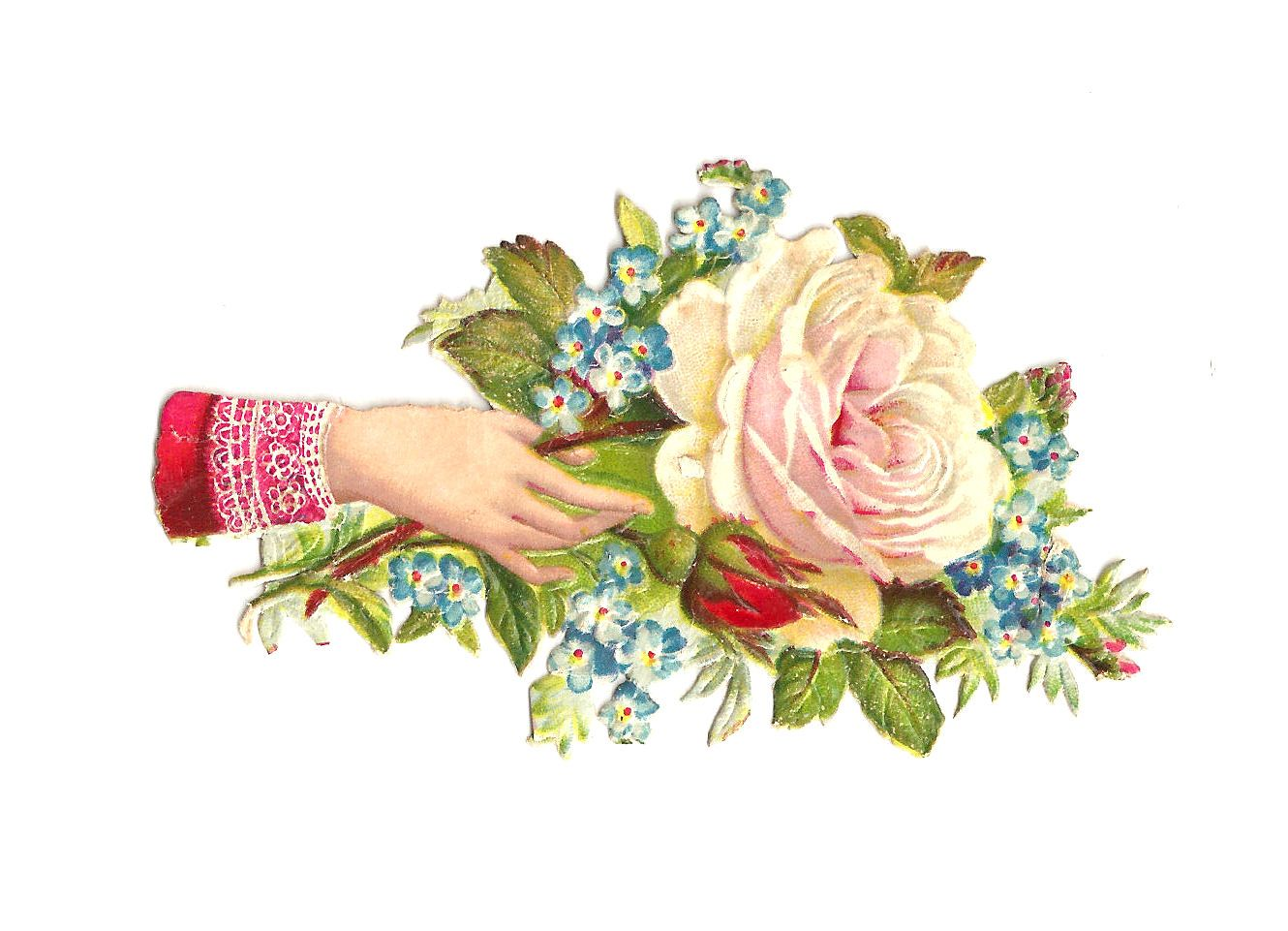 Antique Images: Free Rose Clip Art: White Rose Victorian Scrap Hand Whimsy with Blue Forget-Me-Not Flowers