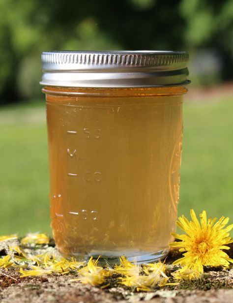 Traditional Scandinavian Dandelion Syrup Recipe Green Apple Syrup Recipe Dandelion Recipes Dandelion
