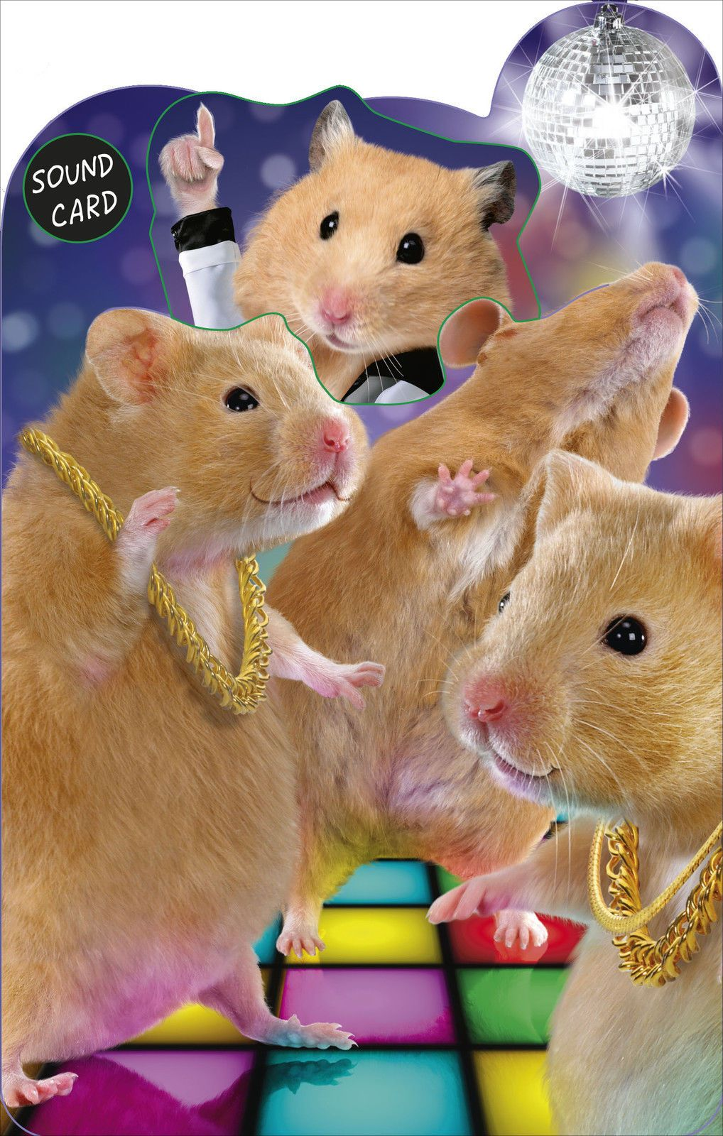 Funny Pull Out Hamsters Birthday Sound Card Noisy Inventions