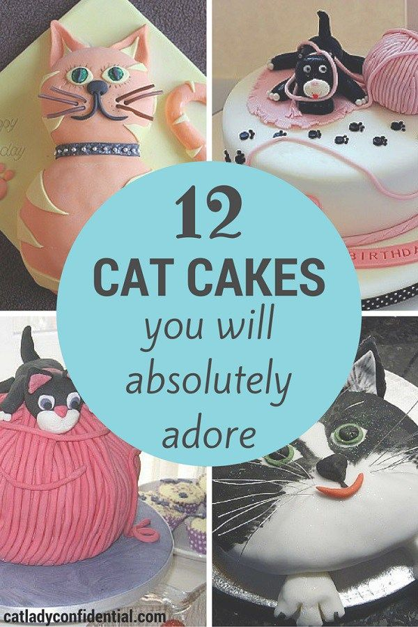 Tremendous 12 Cat Cakes You Will Absolutely Adore Cat Cake Birthday Cake Funny Birthday Cards Online Elaedamsfinfo