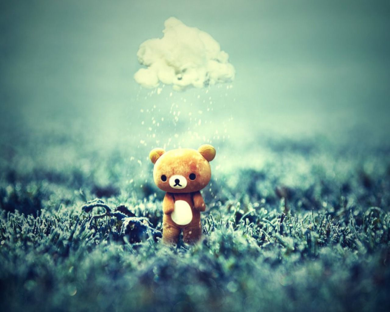 cute teddy bear pictures download free hd images hd wallpapers | hd