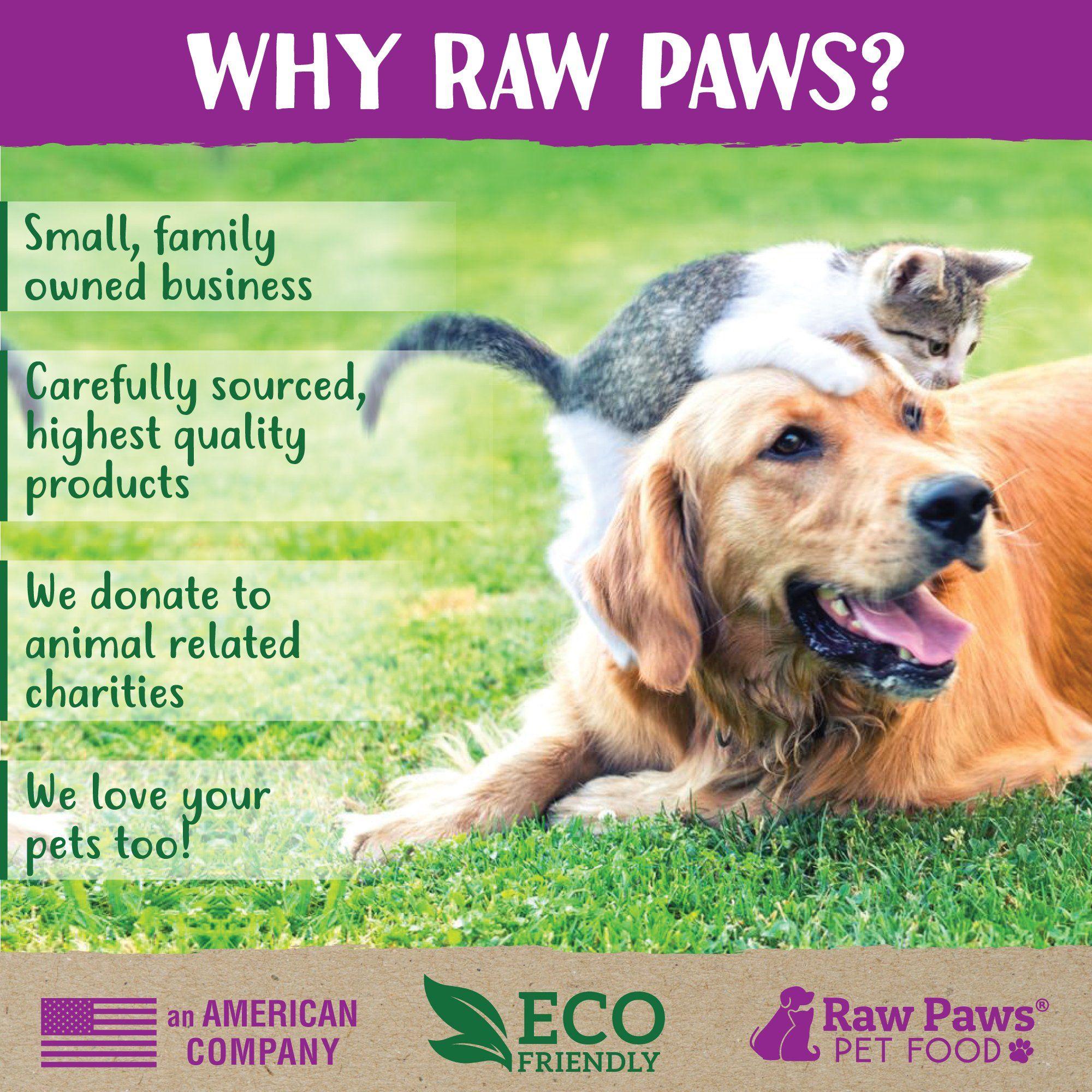Itchy Pet Food Allergies May Be To Blame Food Allergies Pets