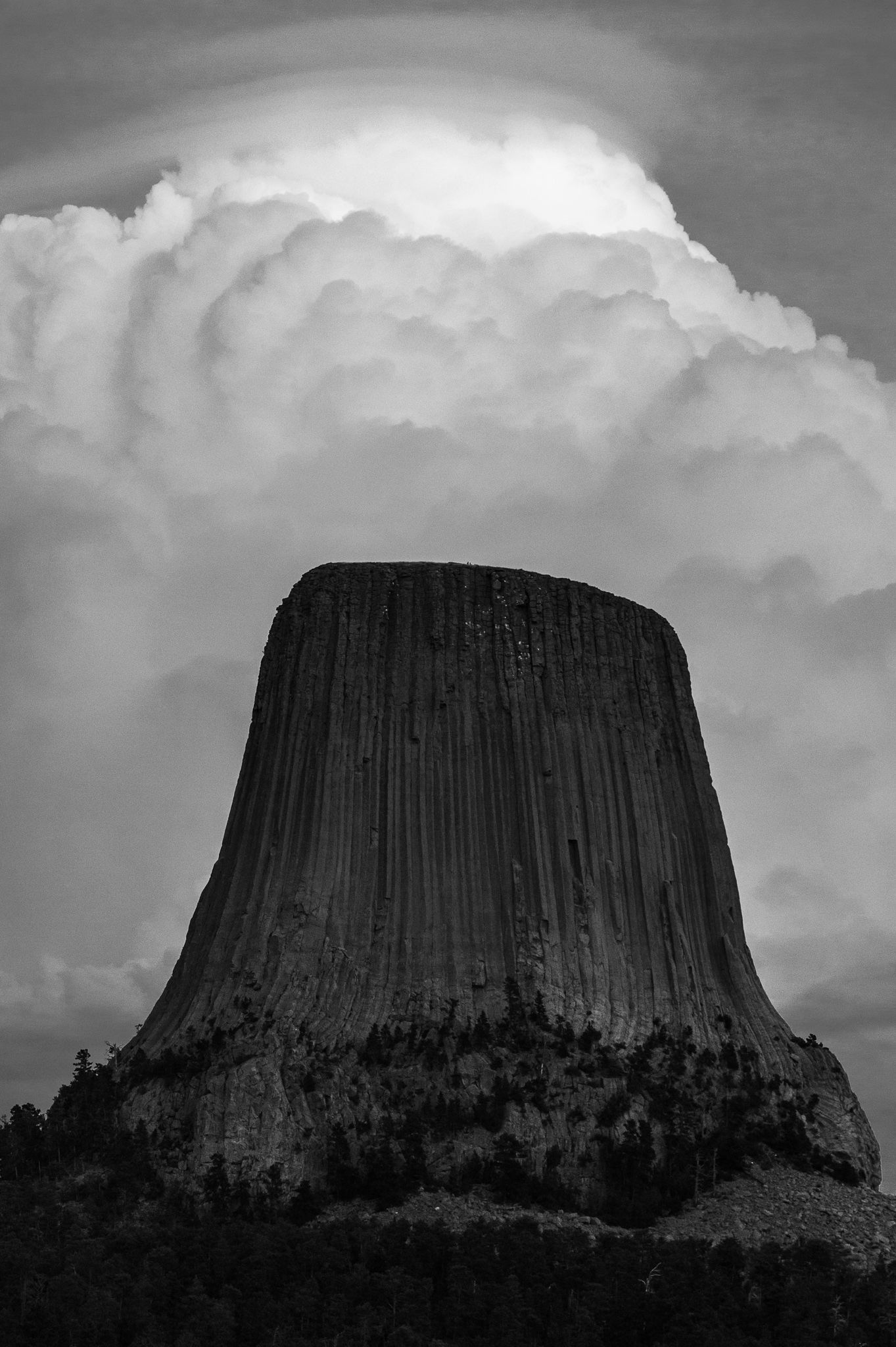 Introduction to black and white nature photography