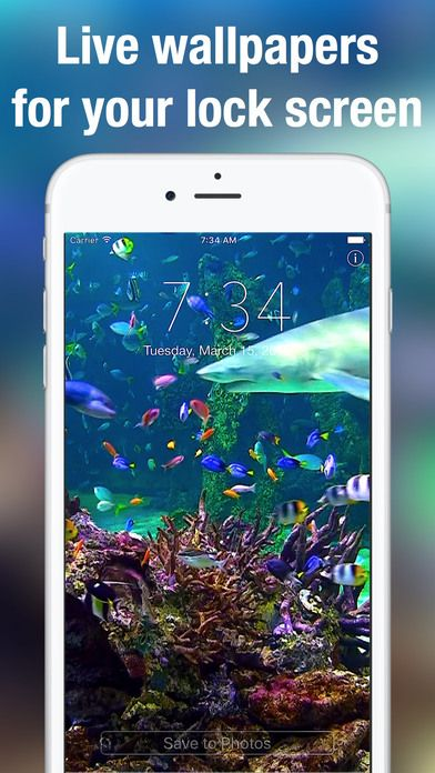 Screen696x696 Jpeg 392 696 Pixels Moving Wallpaper Iphone Free Moving Wallpapers Moving Wallpapers