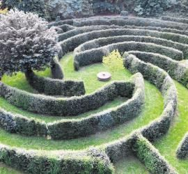 Neue Frisurentrends Fur Baume Labyrinth Garden Labyrinth Maze Labyrinth