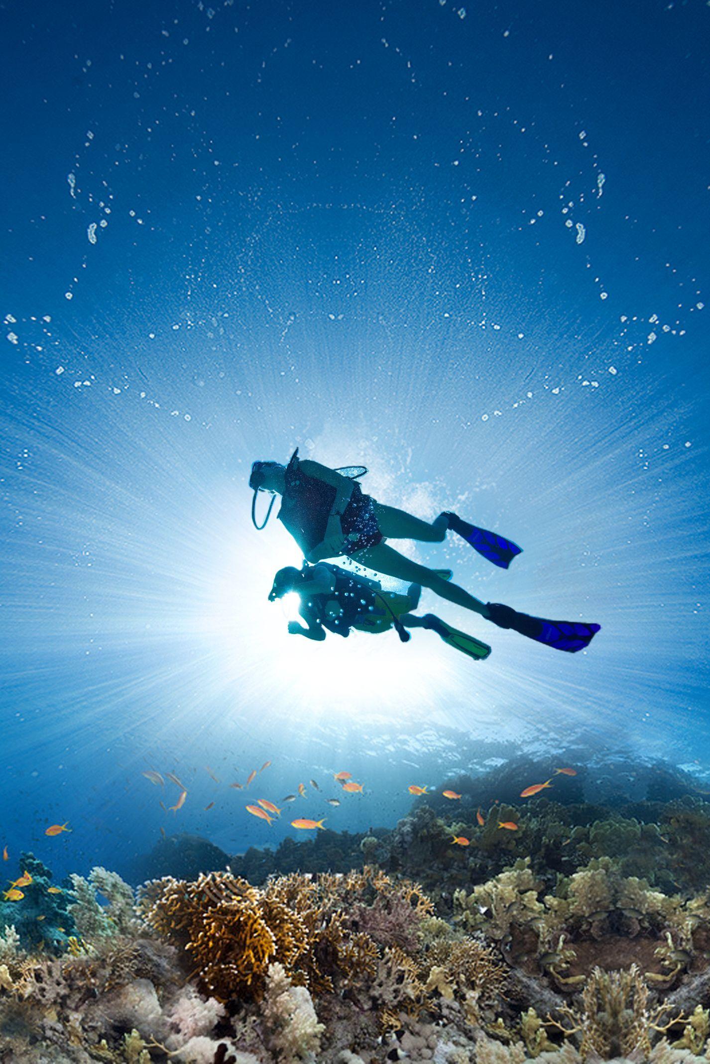Experience The Magic Of The Caribbean Sea With Scuba