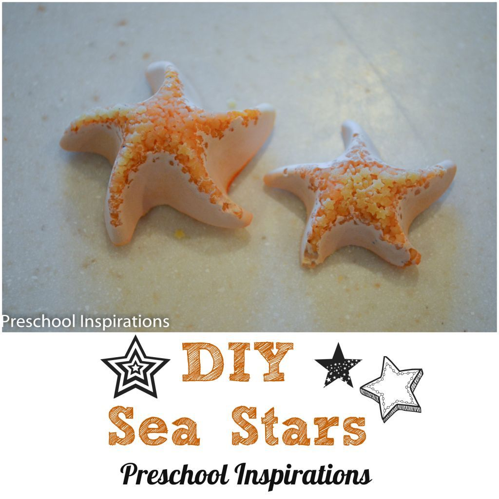 I love how beautiful and unique sea stars are! However, there are none close to me (besides the ones I brought back from beaches). I decided to do an experiment with my preschool class to see...
