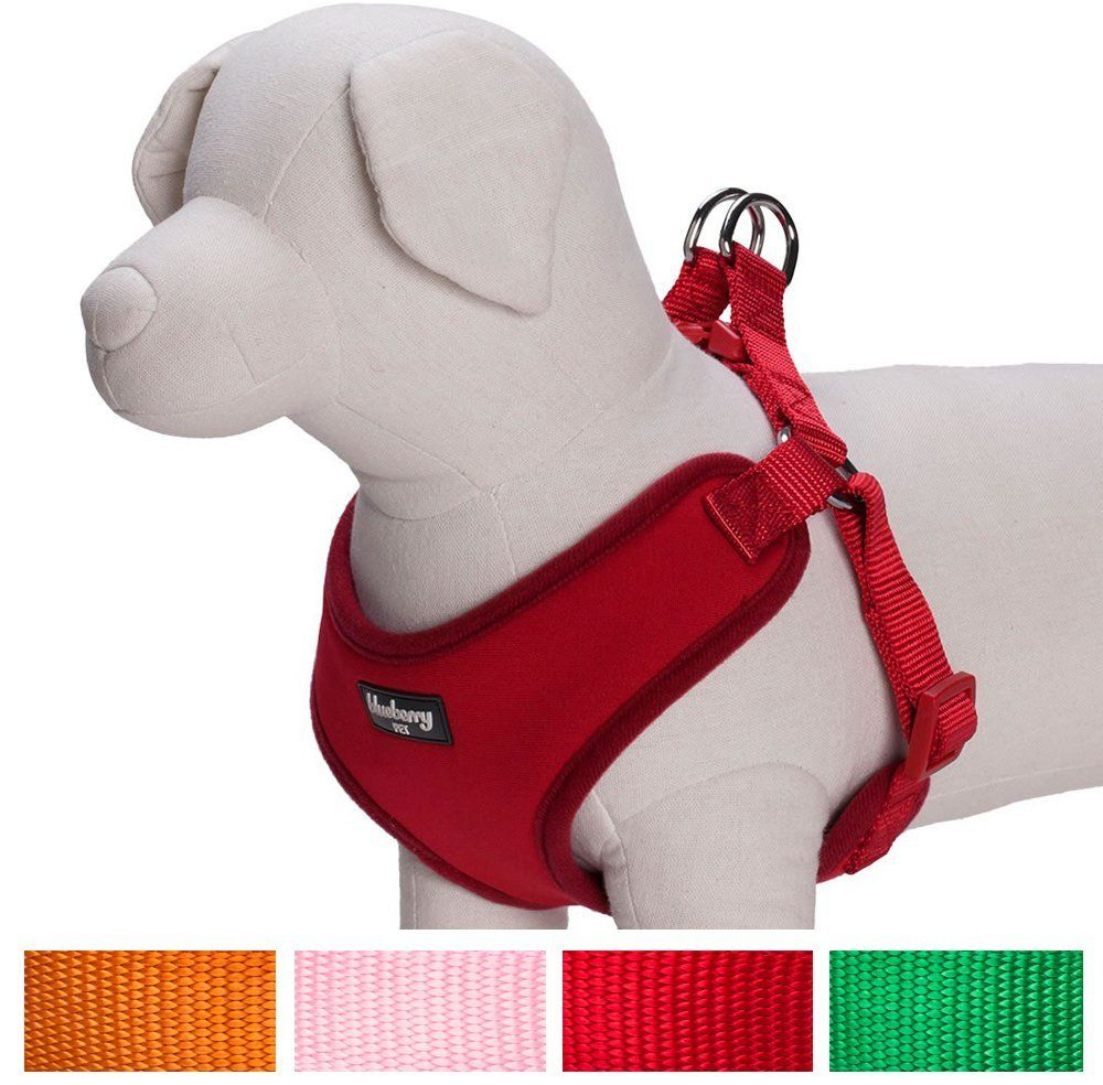 Blueberry Pet Harnesses For Small Dogs Classic Solid Padded Dog