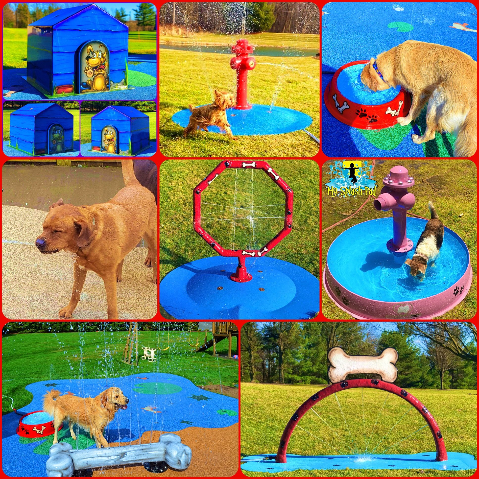 These Portable Splash Pads And Mobile Water Play Features That We Manufacture Are Perfect For Any Dog In Any Backya Dog Playground Dog Backyard Indoor Dog Park