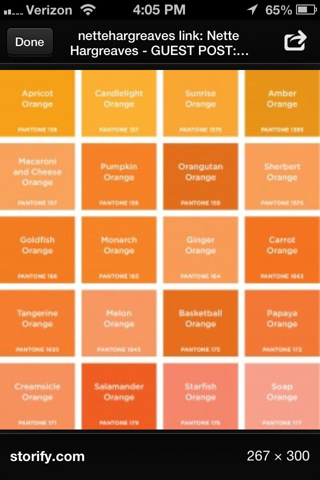 All Shades Of Orange Colors Pantone Orange Orange