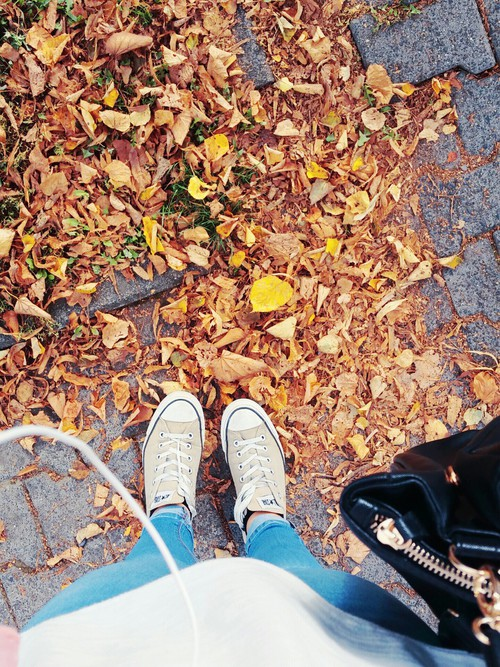 Falling leaves. , amzn.to/1DX9DDz  allstars -  autumm -  #beautiful,  sun -  #me