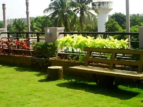 ROOFTOP GARDEN IN INDIA. Beautiful! (Video) | Rooftop Garden, Garden Inspiration, Green Roof Garden