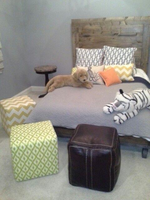 Custom boy's bedroom desugh by Caryn Arriaga